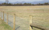 Hi tensile fencing for cattle