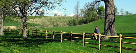 Split-rail fencing for agriculutral and livestock needs